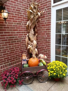 s Fall Decor